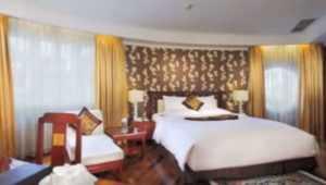 Отель Rex