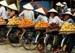 Инвестиции в экономику Вьетнама