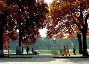 Осень в Ханое