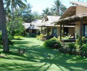 Территория Bamboo Village