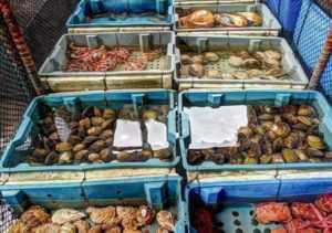 Морепродукты в Халонге