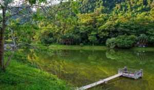 Национальный парк Кук Фыонг