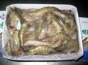 Экспорт креветок из Вьетнама увеличился на 21%