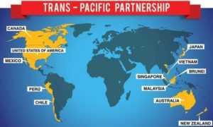 Транстихоокеанское партнерство может работать без США