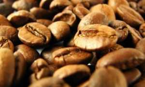Руководство Вьетнама вложит 7,5 миллионов долларов в кофейную отрасль