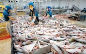 Из Вьетнама существенно вырос экспорт в некоторых отраслях