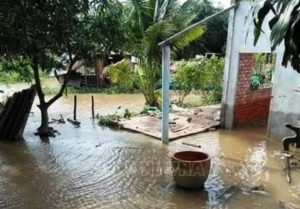 Борьба с оползнями в провинции Ben Tre