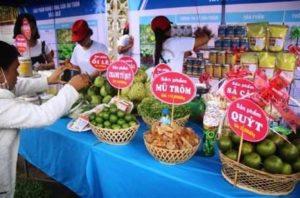 Провинции Gia Lai требуются инвестиции
