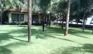 Отель Sunny Beach Resort