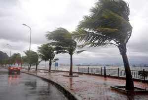 Сезон тайфунов во Вьетнаме