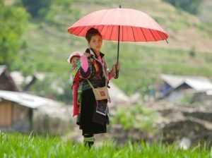 Погода во Вьетнаме в июле