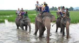 Провинция Дак Лак