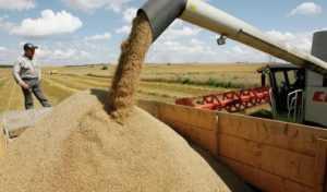 Поставки муки и зерна во Вьетнам из России