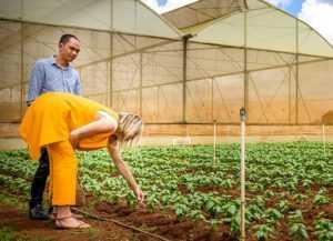 На плантации во Вьетнаме работала королева