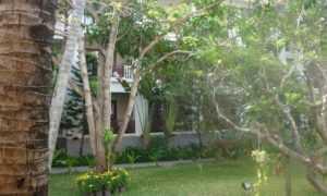 Территория отеля Canary Beach Resort