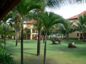 Территория гостиничного комплекса Панданус Резорт