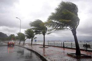 В июне Вьетнаме пройдут один или два шторма