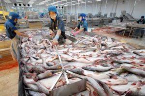 Производители продуктов во Вьетнаме могут перейти на стандарты ЕС