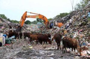 Проект по переработке отходов на Фукуоке отменят