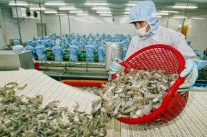 Сальдо торгового баланса Вьетнама за I полугодие составляет 1,6 млрд $