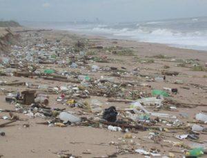 В Дананге прошла конференция по охране морской среды