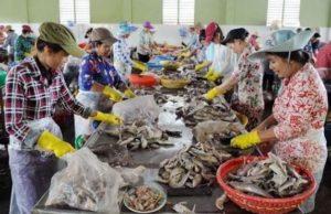 Вьетнамской провинции Tra Vinh необходимы инвестиции