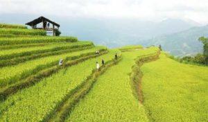 Неделя культуры и туризма в провинции Ha Giang пройдёт в сентябре